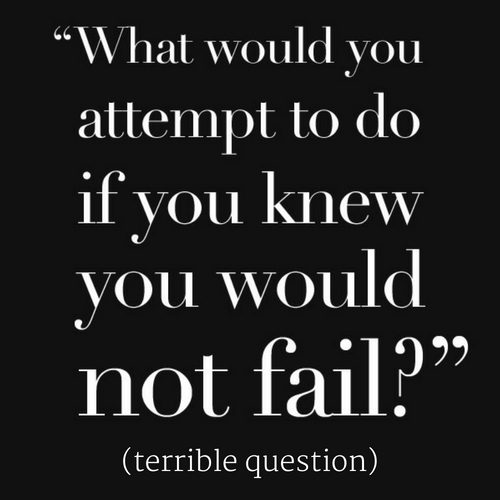 What Would You Do If You Knew You Could Not Fail Terrible Question Mike Goncalves